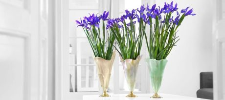 Iris Day. Creating a gorgeous flower arrangement is easy when your bouquet is displayed in our vases Thais, Paris and Merry. Thais is a turtledove cream glass vase having a hand polished bronze base. Paris is a large flower vase in pearly white with gently blended jade green highlights on a bronze base. Merry is a soft shell pink vase with gently blended cream highlights on a bronze base.